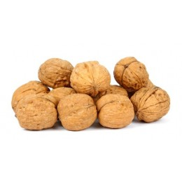 Walnuts in shell - 1kg