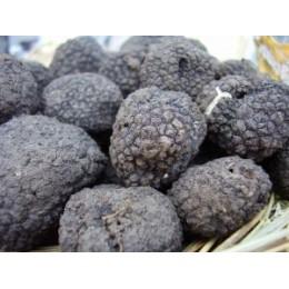 Black truffle - 1kg